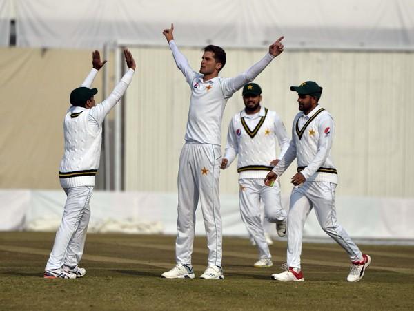 Pakistani players celebrating after picking up a wicket. (Photo/Pakistan Cricket Twitter)