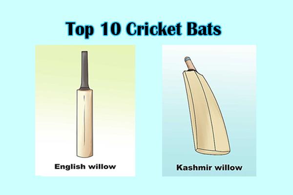 Top 10 Cricket