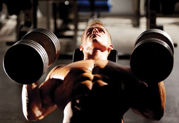 Chest Press with Dumbbells