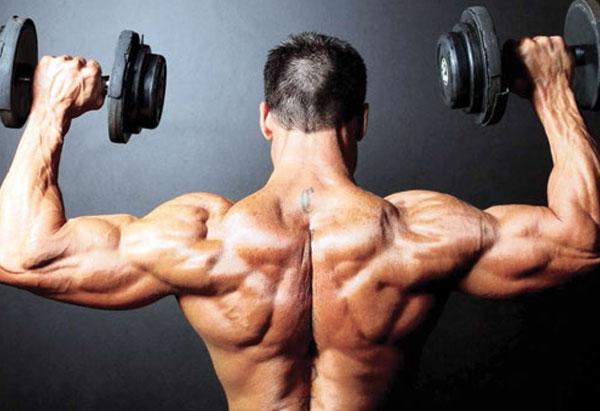 Dumbbells Shoulder