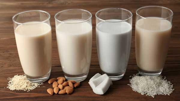 Plant milk
