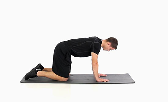 Spine Rotation