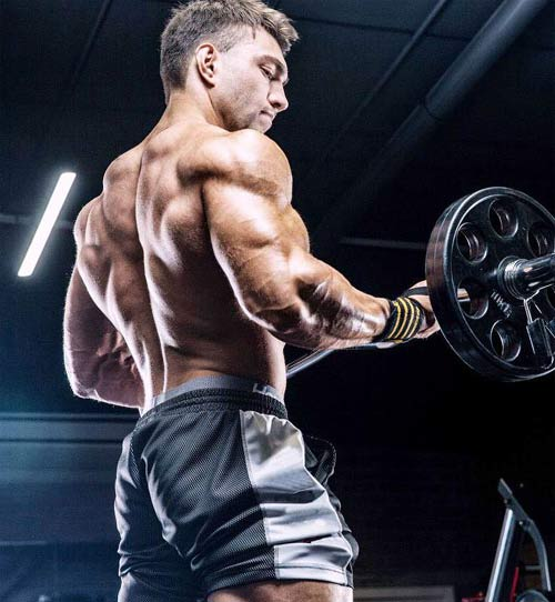 GYM Training Muscle