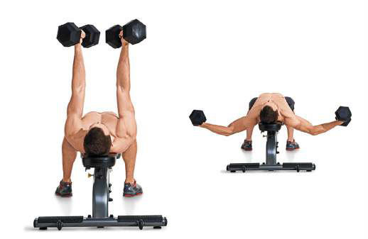 Dumbbell and chest