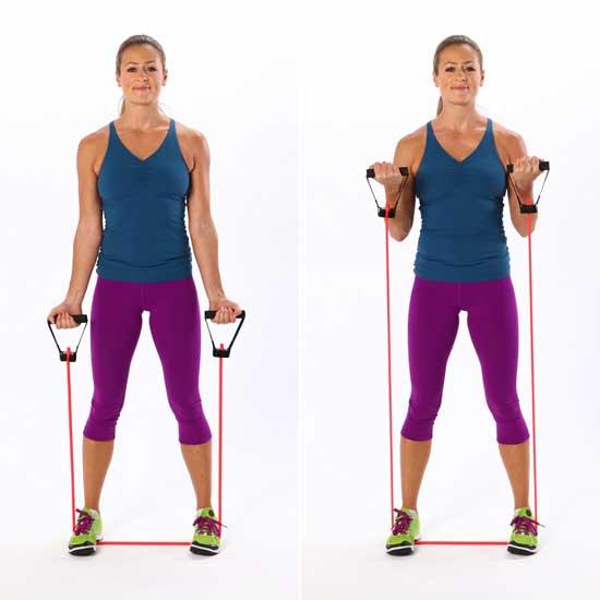 Biceps Workout